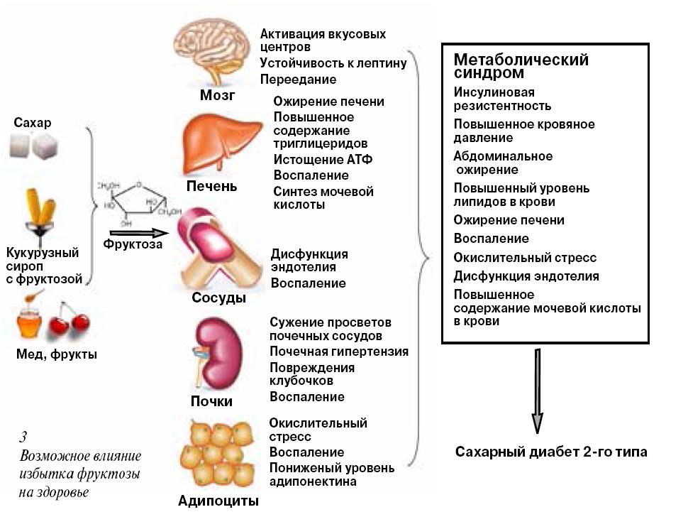 какие статины лечат холестерин